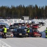knuffarcupen2013481